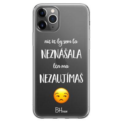 Nie Že By Som Ťa Neznášala Kryt iPhone 11 Pro Max