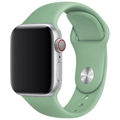 Silikónový Náramok Apple Watch 42/44mm Beryl Large